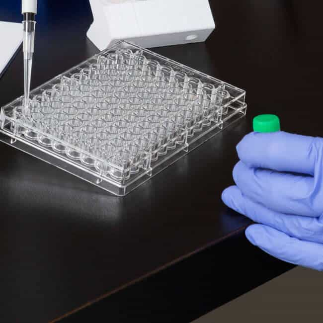 About production with a box of vials and gloved hands working with a pipette