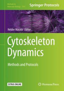 Cytoskeleton Dynamics